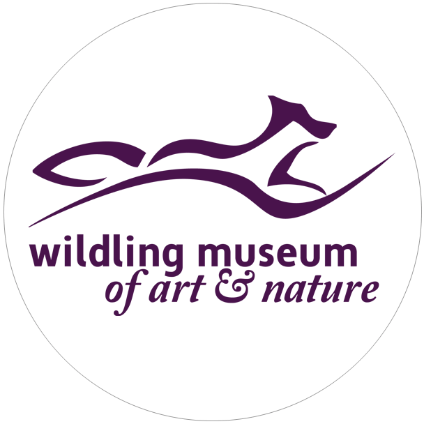 museum of art and nature