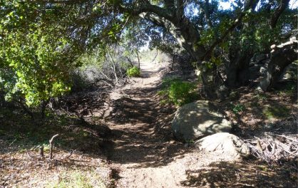 Old Mission Trail
